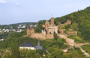 a castle on top of a grass covered field with Rhine in the background